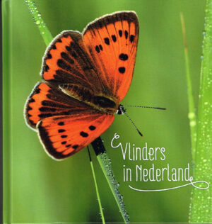 Nederland 2015 Boekje Vlinders in Nederland.