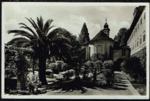 Postkarte Ansichtskarte Insel Mainau im Bodensee 1939 Schlossgarten Palme